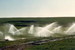 השקייה-מהסכר-שנות-השמונים